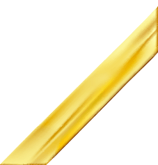 Gold Ribbon Bottom